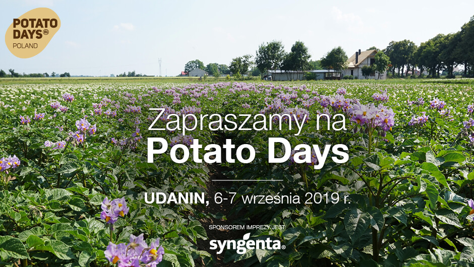 Potato Days w Udaninie