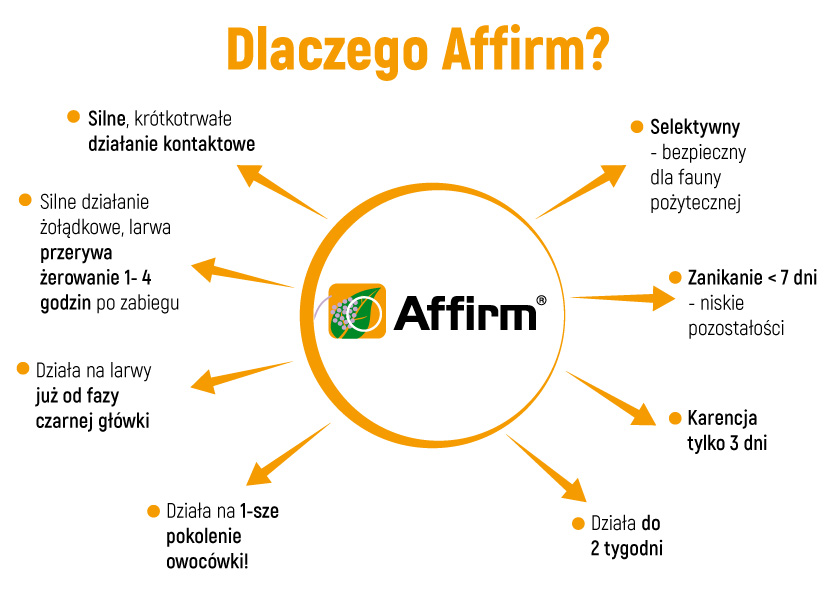 affirm diagram