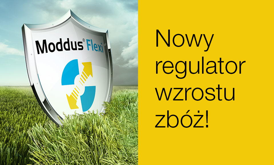 Regulator wzrostu Moddus Flexi